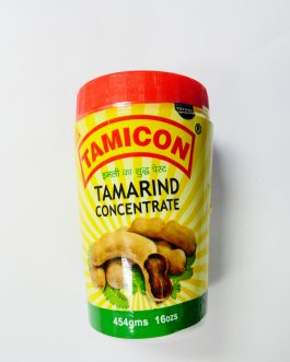 tamicon